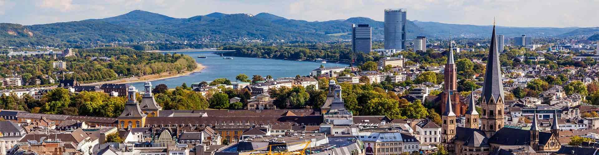 Free Tours en Bonn