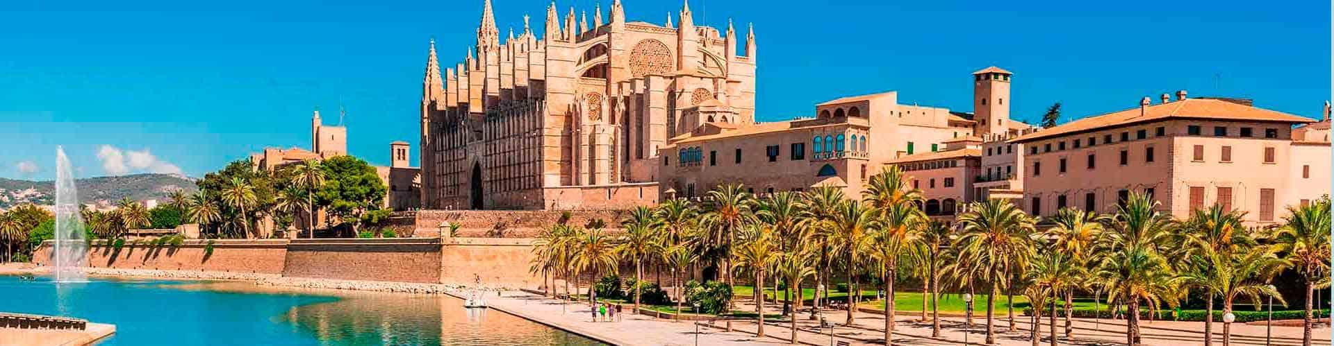 free tour mallorca – turismo españa