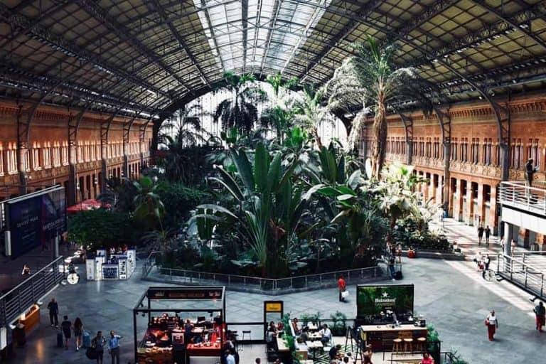 Jardín interior de la Estación de Atocha